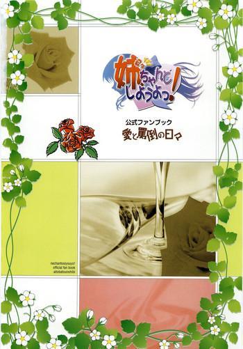 nee chan to shiyou yo koushiki fanbook ai to batou no hibi cover